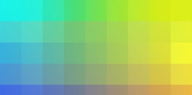 諸器官と色彩